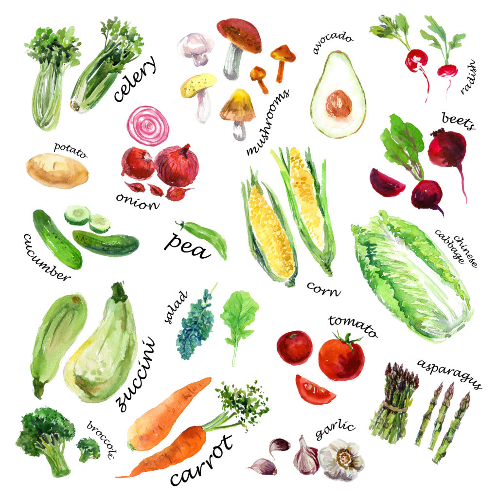 Weight Loss Ideas: Adopt a Plant Based Diet
