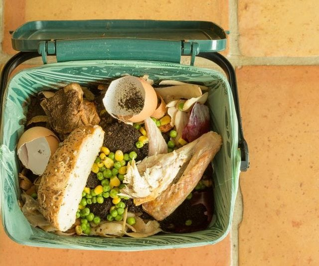 How Ordinary People Can Help Stop Food Waste