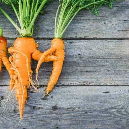 food waste ugly carrots